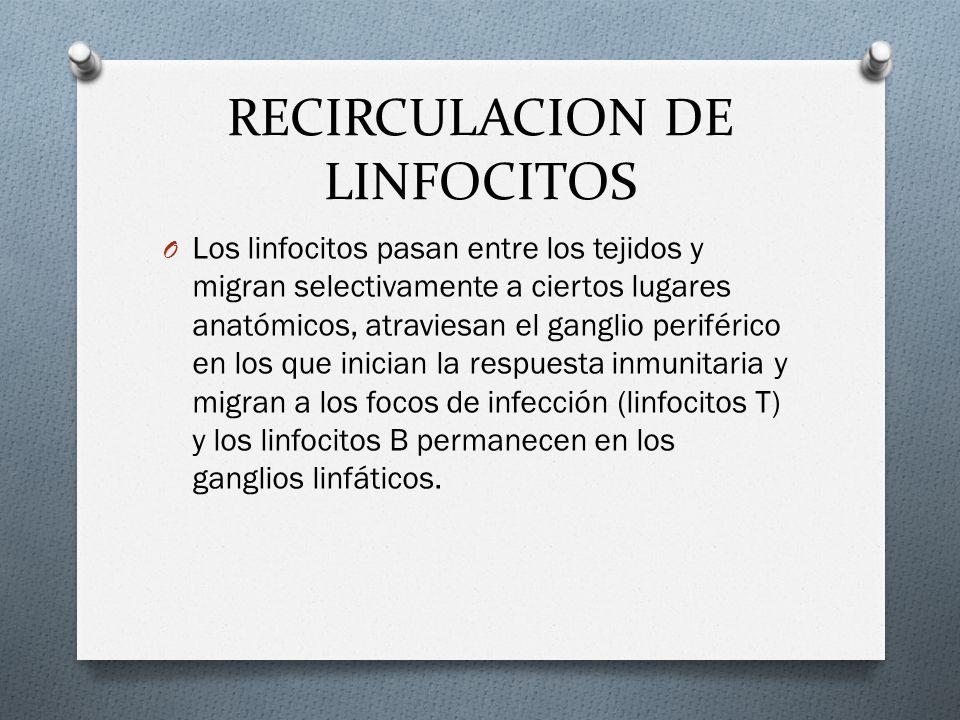 RECIRCULACION DE LINFOCITOS