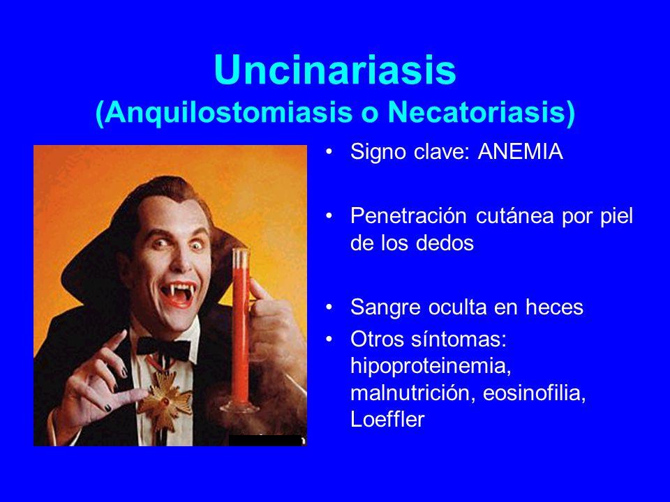 Uncinariasis (Anquilostomiasis o Necatoriasis)