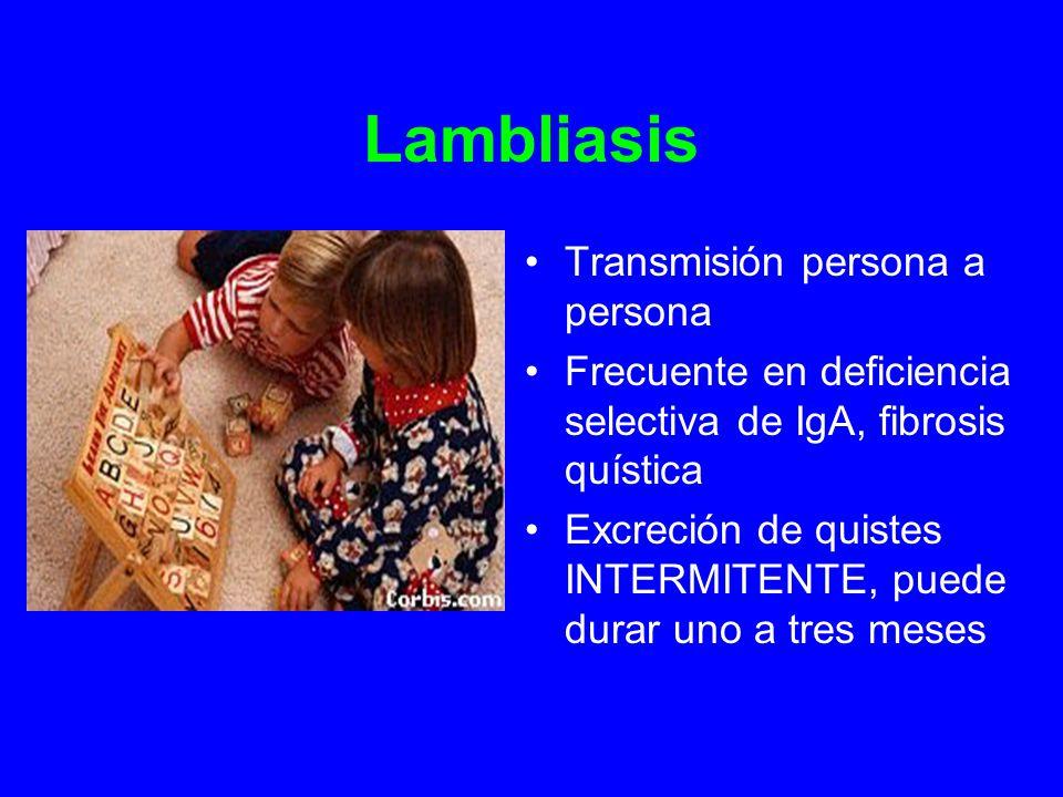 Lambliasis Transmisión persona a persona