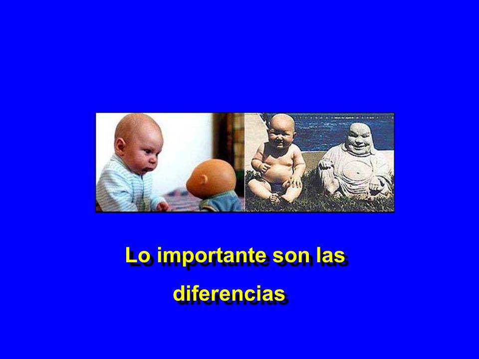 Lo importante son las diferencias