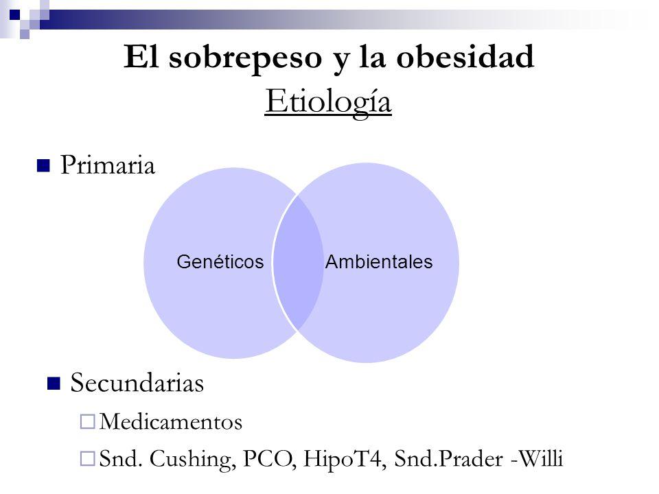 El sobrepeso y la obesidad Etiología
