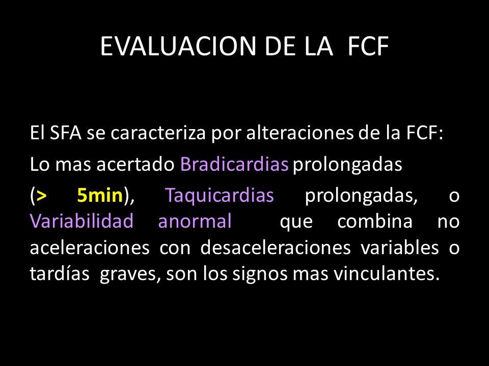 EVALUACION DE LA FCF