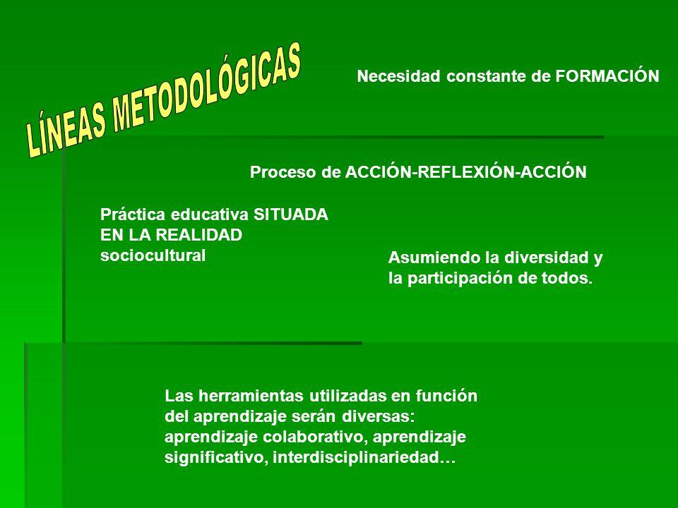 LÍNEAS METODOLÓGICAS Necesidad constante de FORMACIÓN