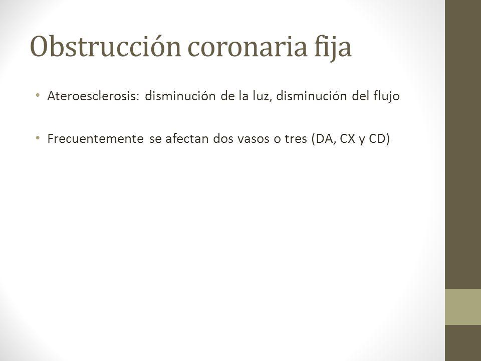 Obstrucción coronaria fija