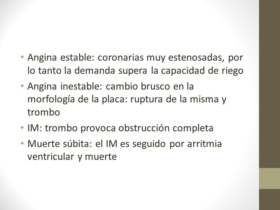 Angina estable: coronarias muy estenosadas, por lo tanto la demanda supera la capacidad de riego