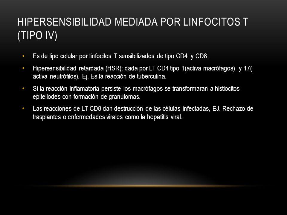 HIPERSENSIBILIDAD MEDIADA POR LINFOCITOS T (TIPO IV)