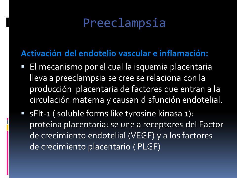 Preeclampsia Activación del endotelio vascular e inflamación: