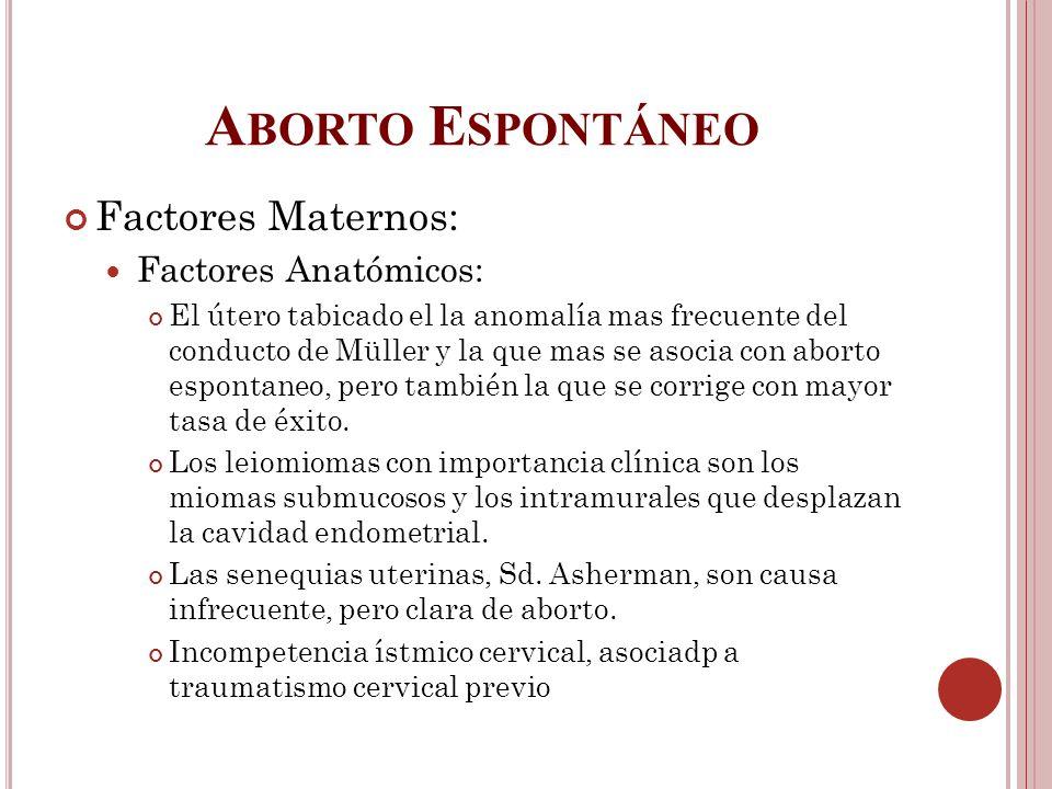 Aborto Espontáneo Factores Maternos: Factores Anatómicos: