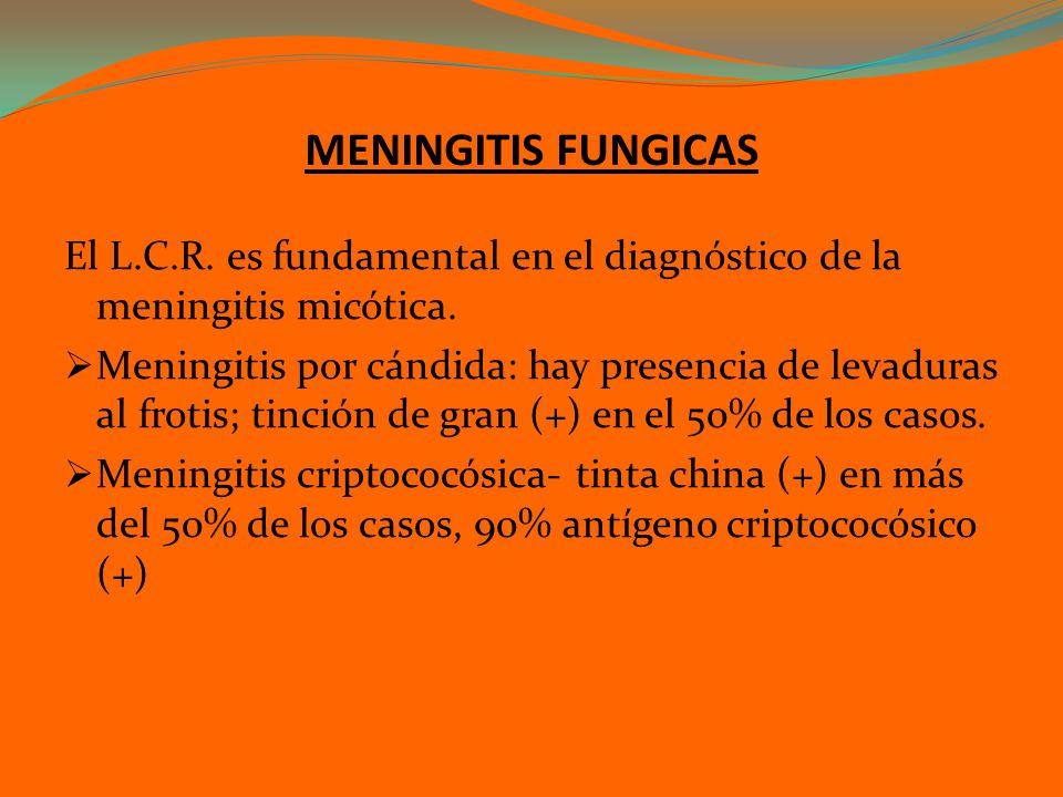 MENINGITIS FUNGICAS El L.C.R. es fundamental en el diagnóstico de la meningitis micótica.