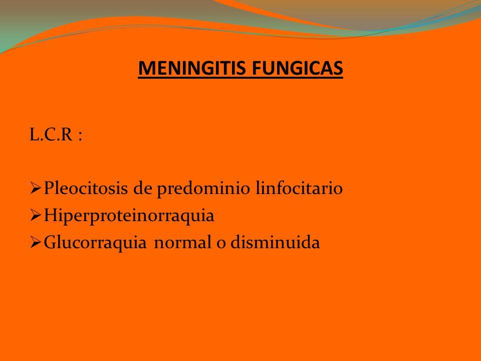 MENINGITIS FUNGICAS L.C.R : Pleocitosis de predominio linfocitario