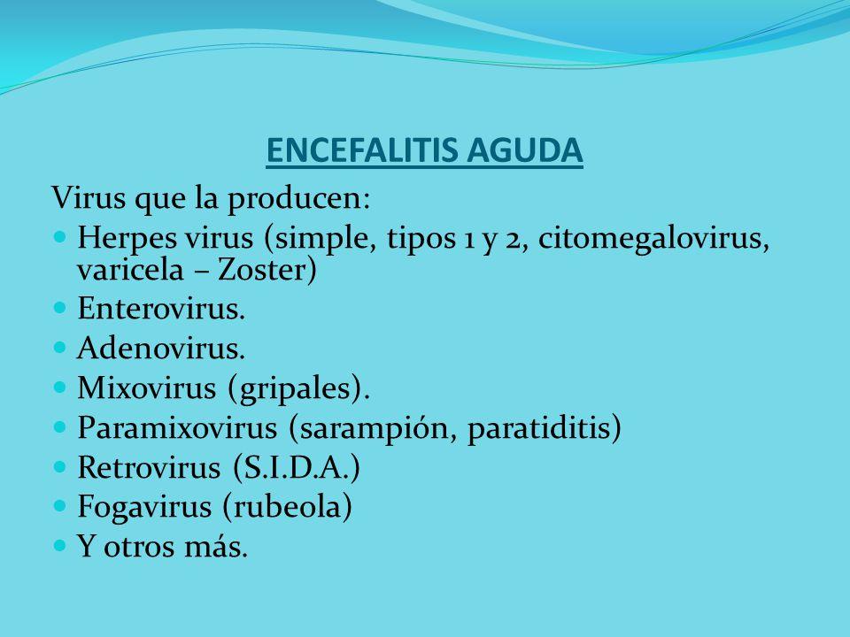ENCEFALITIS AGUDA Virus que la producen: