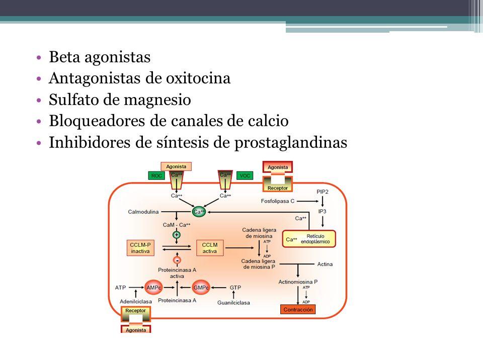 Beta agonistas Antagonistas de oxitocina. Sulfato de magnesio. Bloqueadores de canales de calcio.