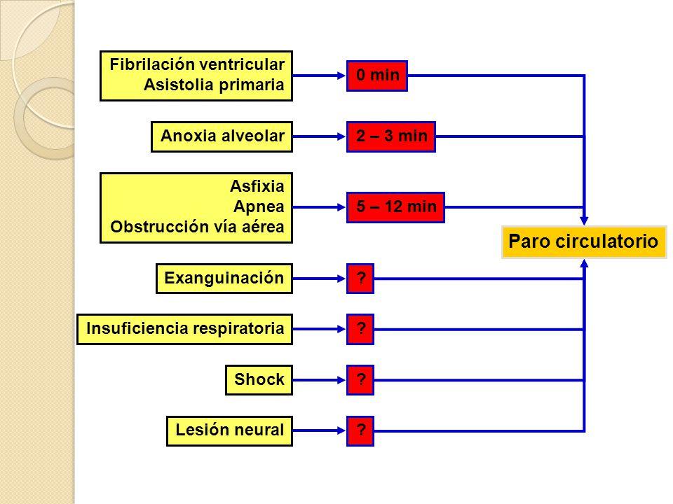 Paro circulatorio Fibrilación ventricular Asistolia primaria