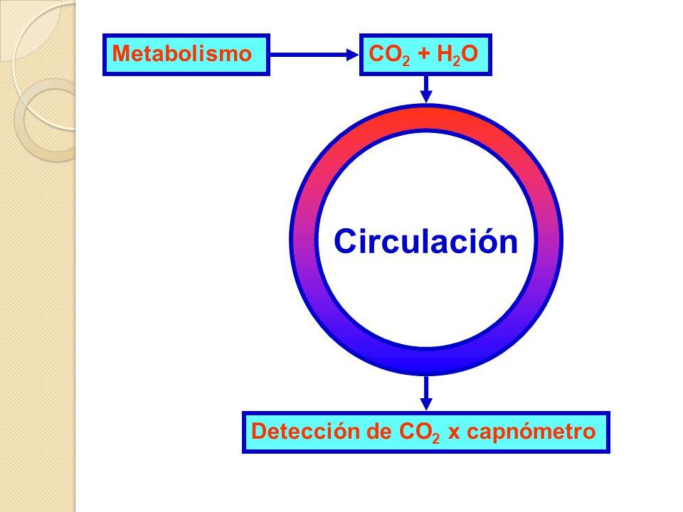 Metabolismo CO2 + H2O Circulación Detección de CO2 x capnómetro
