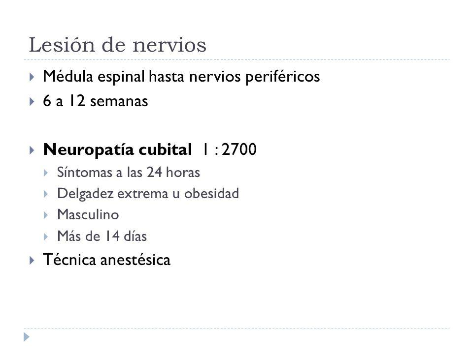Lesión de nervios Médula espinal hasta nervios periféricos