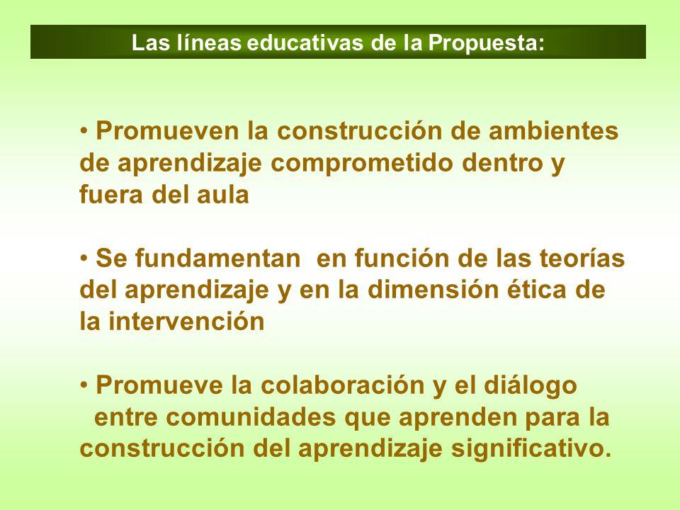 Las líneas educativas de la Propuesta: