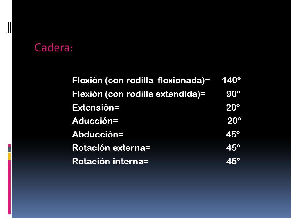 Cadera: Flexión (con rodilla flexionada)= 140º