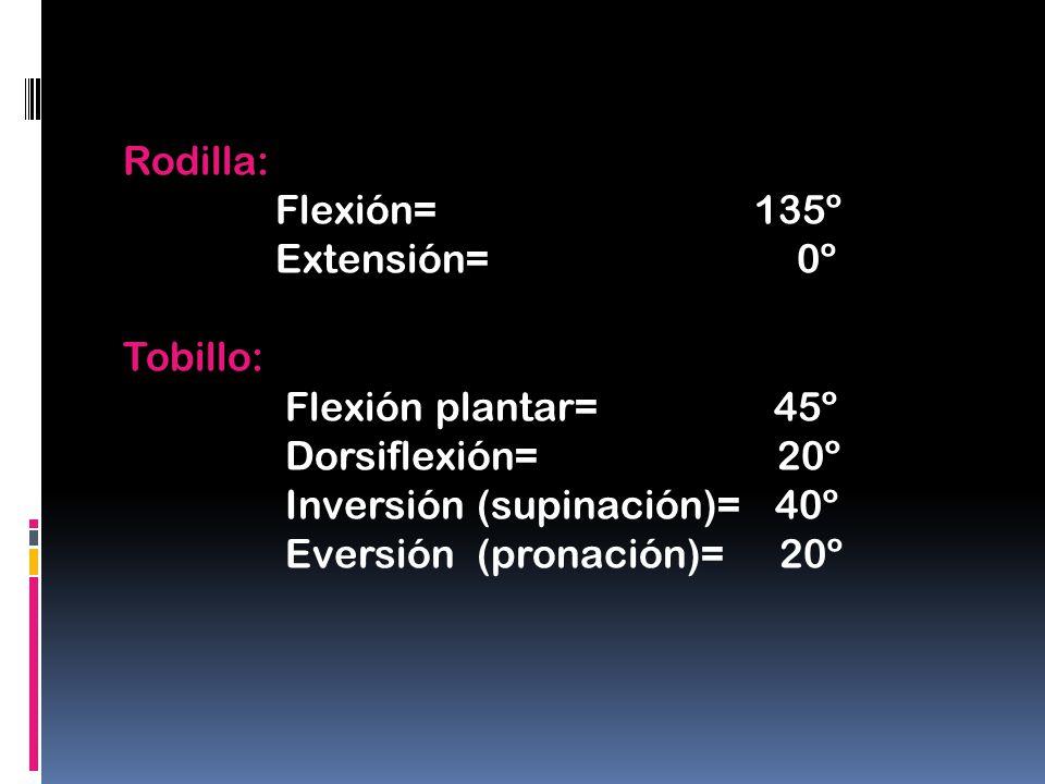 Rodilla: Flexión= 135º Extensión= 0º Tobillo: Flexión plantar= 45º Dorsiflexión= 20º Inversión (supinación)= 40º Eversión (pronación)= 20º
