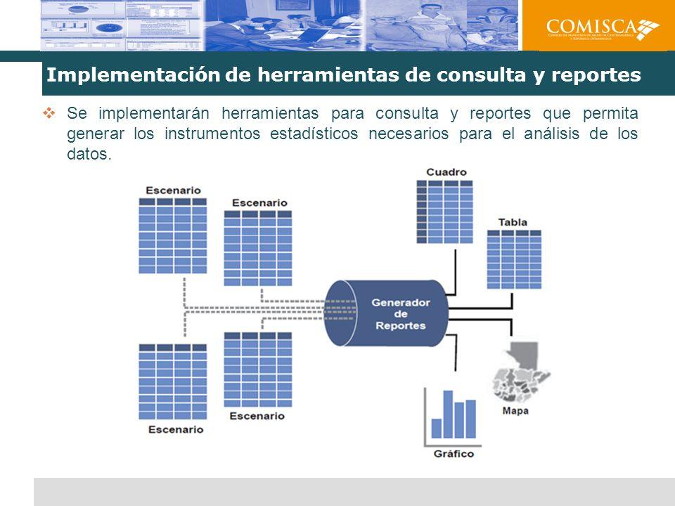 Implementación de herramientas de consulta y reportes