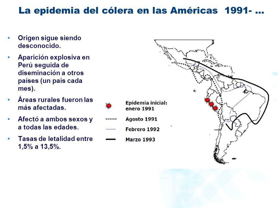 La epidemia del cólera en las Américas 1991- …