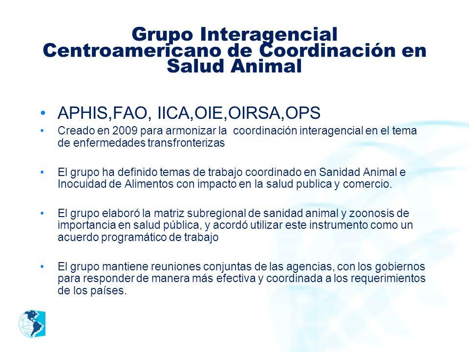 Grupo Interagencial Centroamericano de Coordinación en Salud Animal