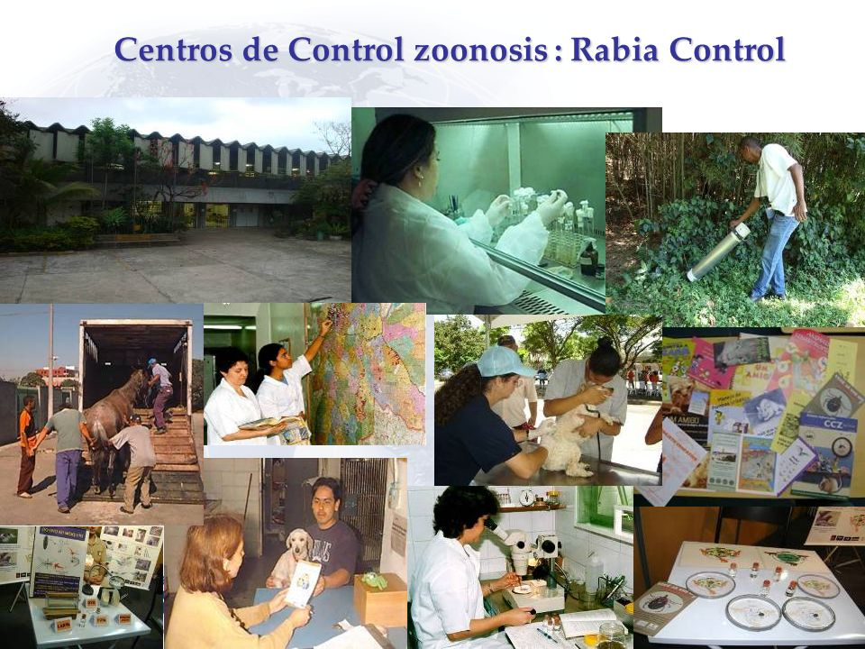 Centros de Control zoonosis : Rabia Control