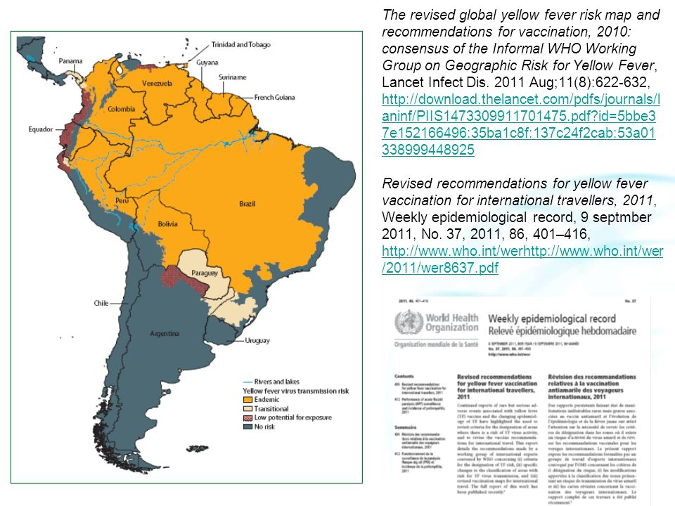 The revised global yellow fever risk map and recommendations for vaccination, 2010: consensus of the Informal WHO Working