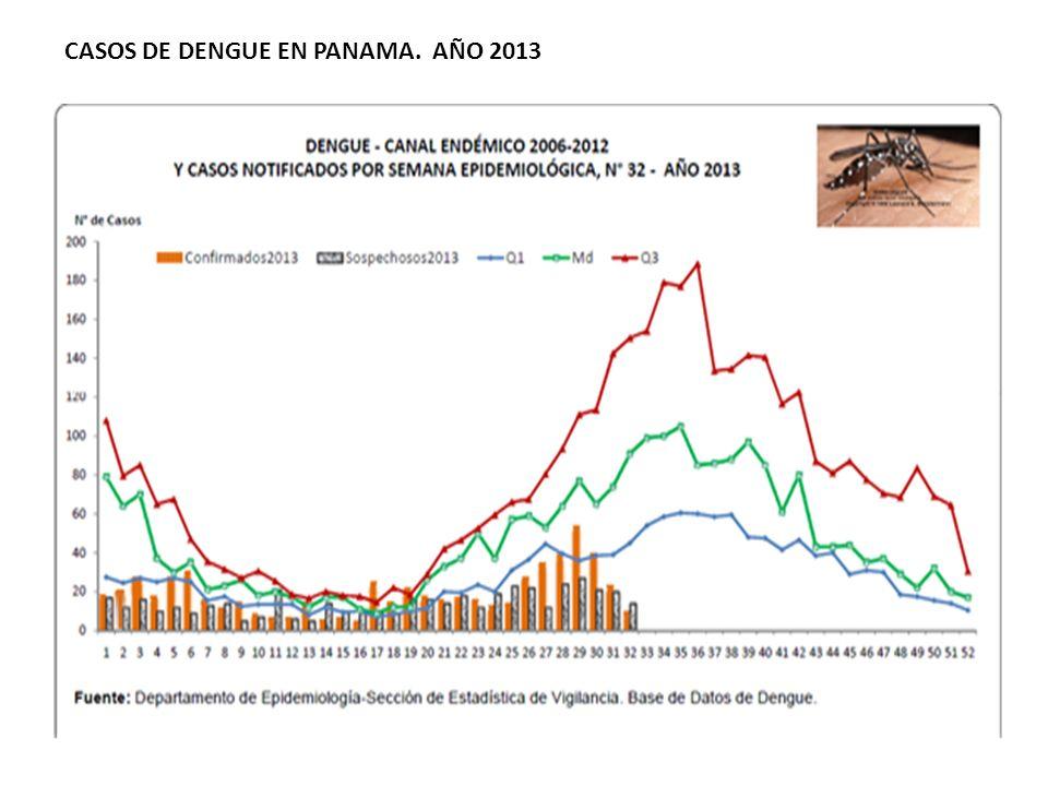 CASOS DE DENGUE EN PANAMA. AÑO 2013