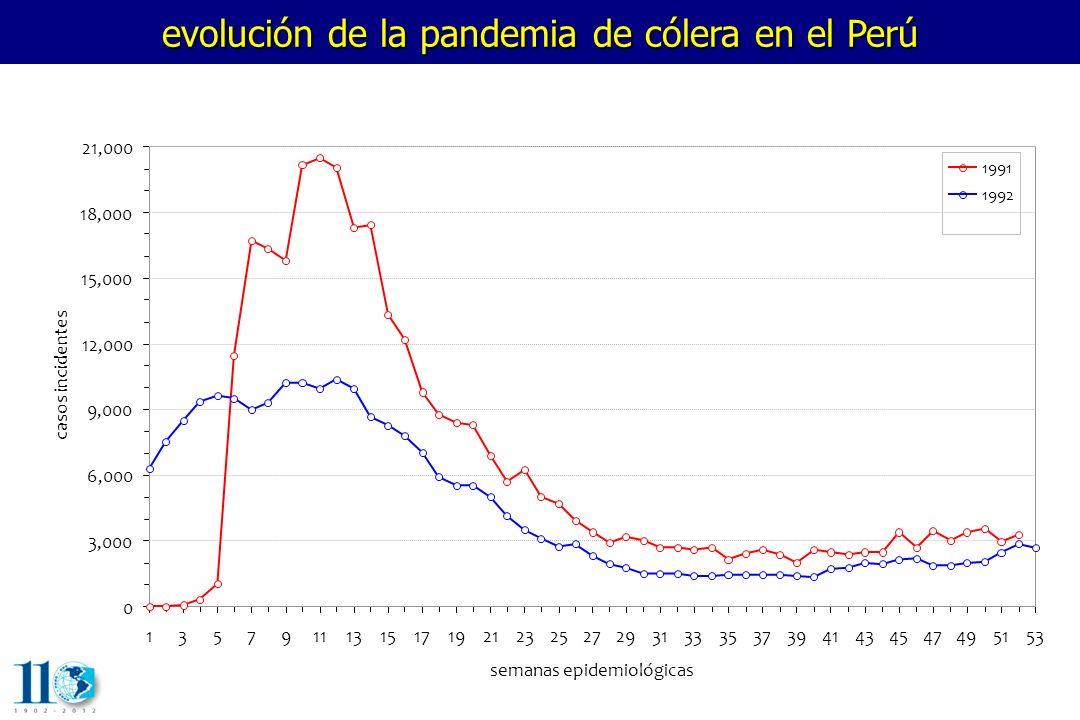 evolución de la pandemia de cólera en el Perú