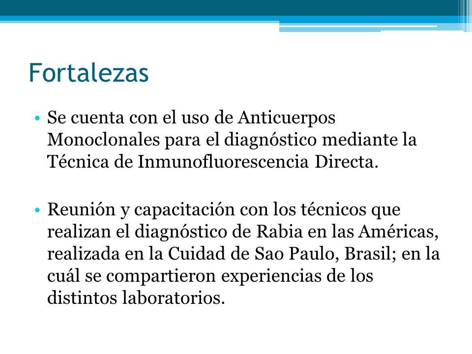 Fortalezas Se cuenta con el uso de Anticuerpos Monoclonales para el diagnóstico mediante la Técnica de Inmunofluorescencia Directa.