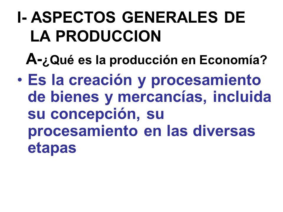 I- ASPECTOS GENERALES DE LA PRODUCCION