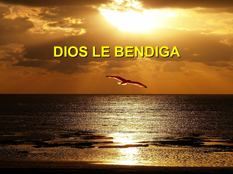 DIOS LE BENDIGA