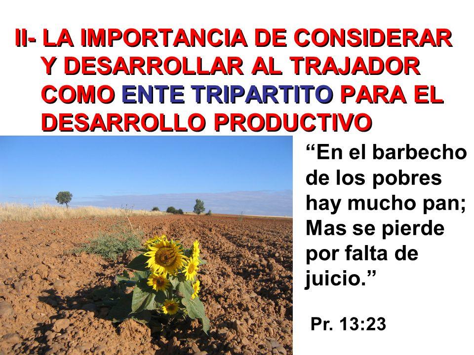 II- LA IMPORTANCIA DE CONSIDERAR Y DESARROLLAR AL TRAJADOR COMO ENTE TRIPARTITO PARA EL DESARROLLO PRODUCTIVO