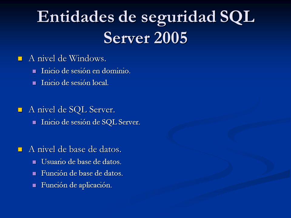 Entidades de seguridad SQL Server 2005