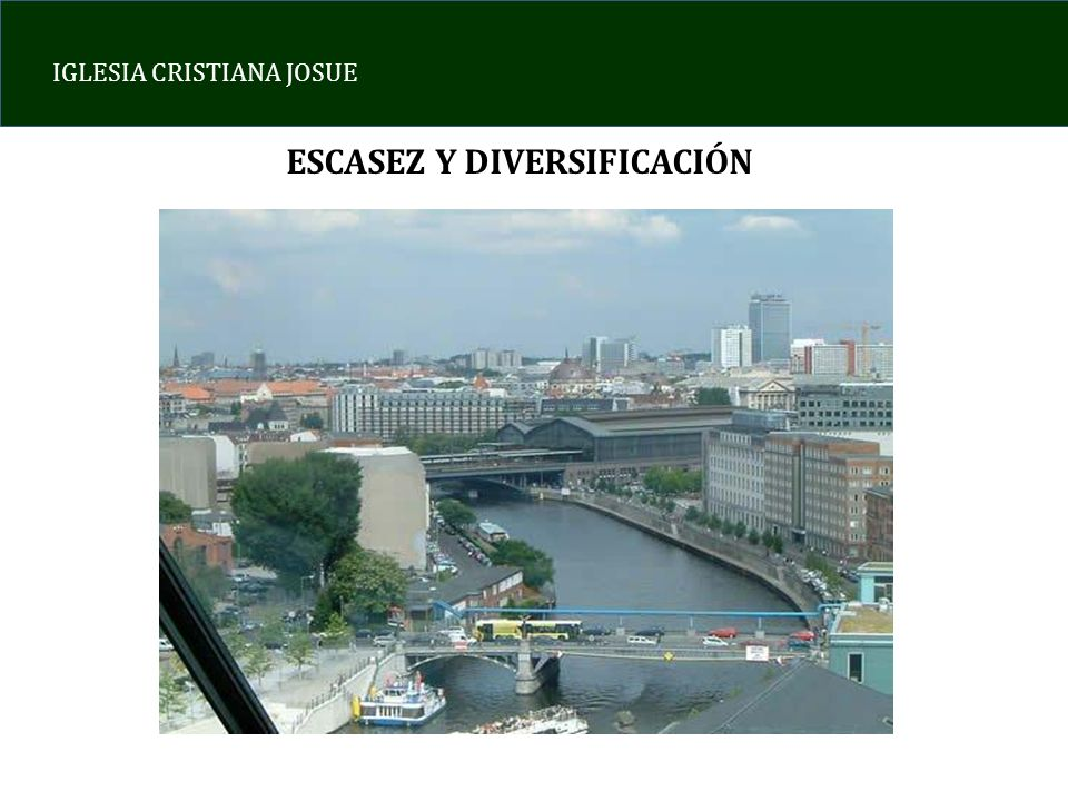 ESCASEZ Y DIVERSIFICACIÓN