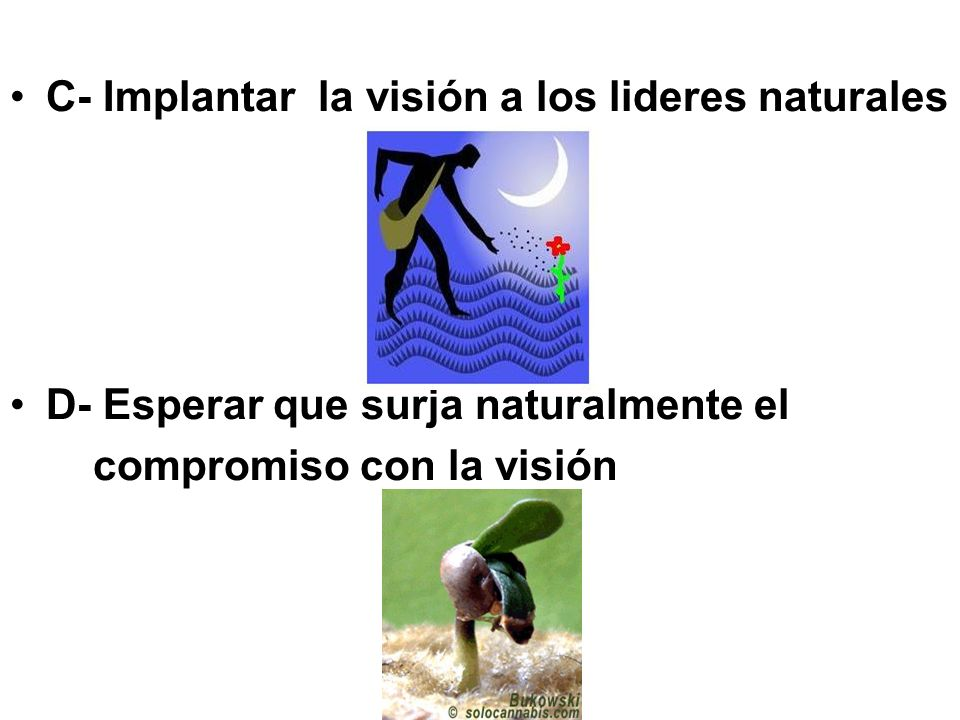 C- Implantar la visión a los lideres naturales