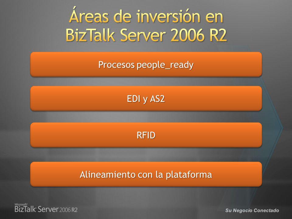 Áreas de inversión en BizTalk Server 2006 R2
