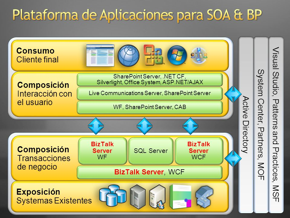 Plataforma de Aplicaciones para SOA & BP