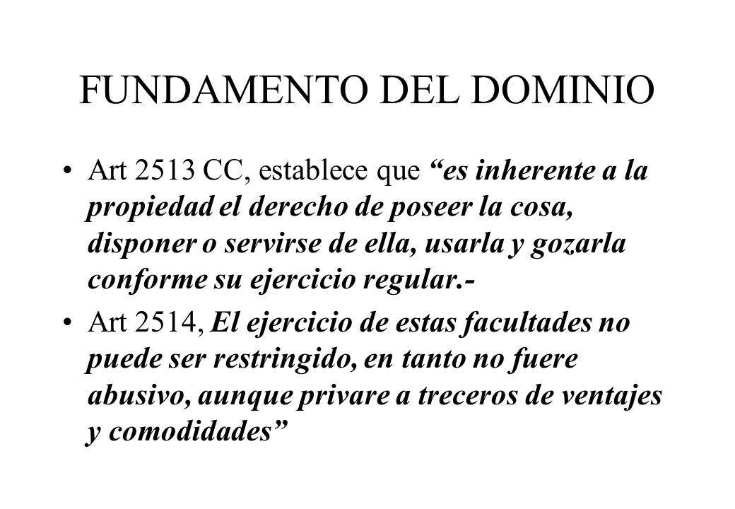 FUNDAMENTO DEL DOMINIO