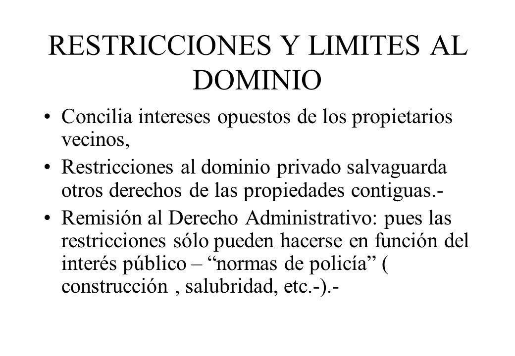 RESTRICCIONES Y LIMITES AL DOMINIO