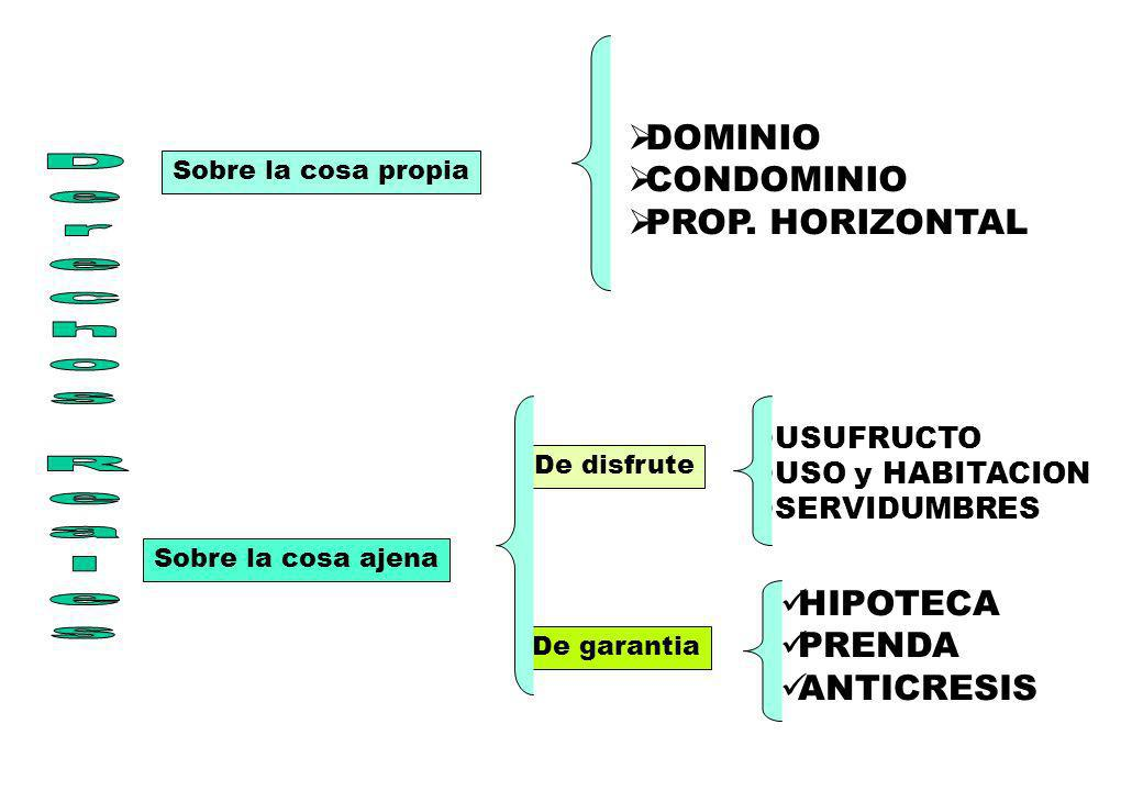 Derechos Reales DOMINIO CONDOMINIO PROP. HORIZONTAL HIPOTECA PRENDA