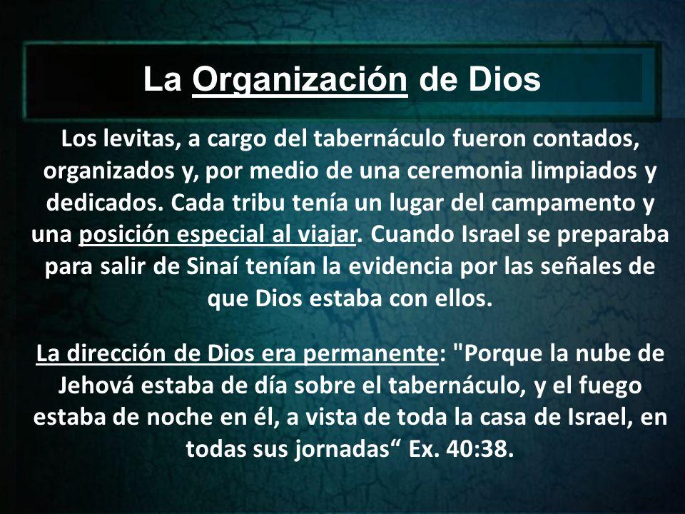 La Organización de Dios