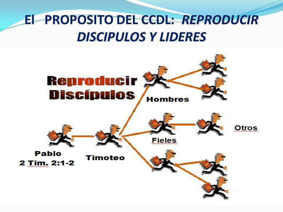 El PROPOSITO DEL CCDL: REPRODUCIR DISCIPULOS Y LIDERES