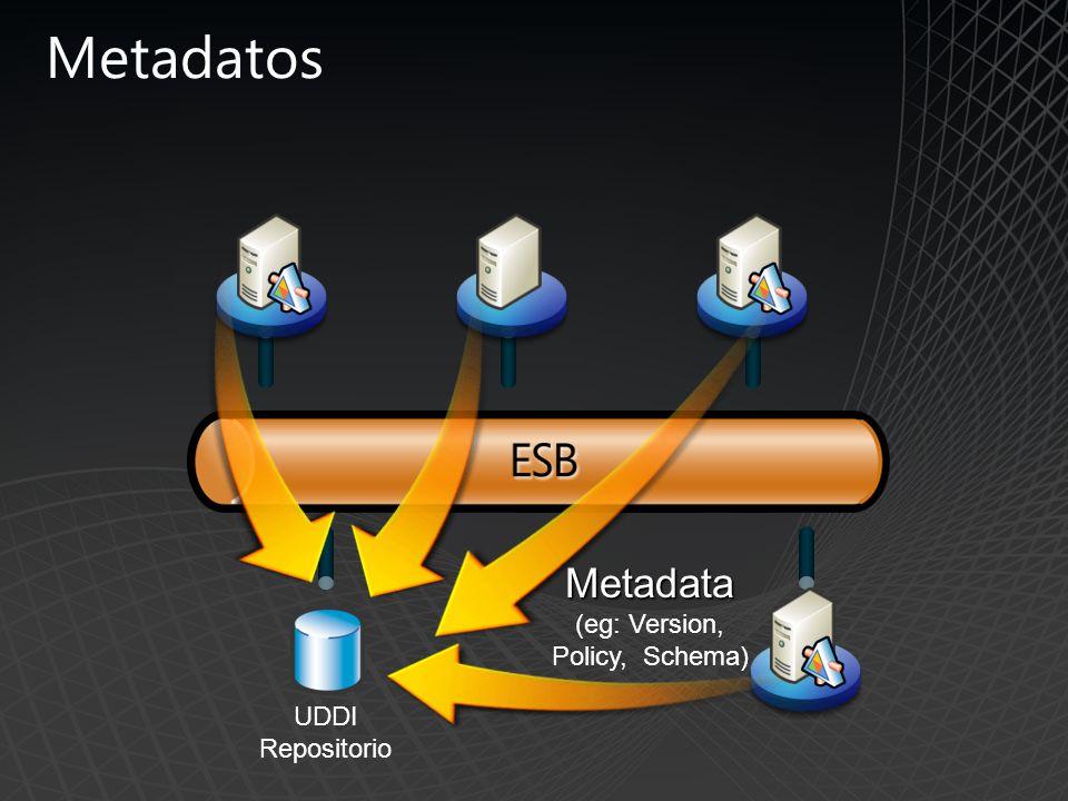 Metadata (eg: Version, Policy, Schema)