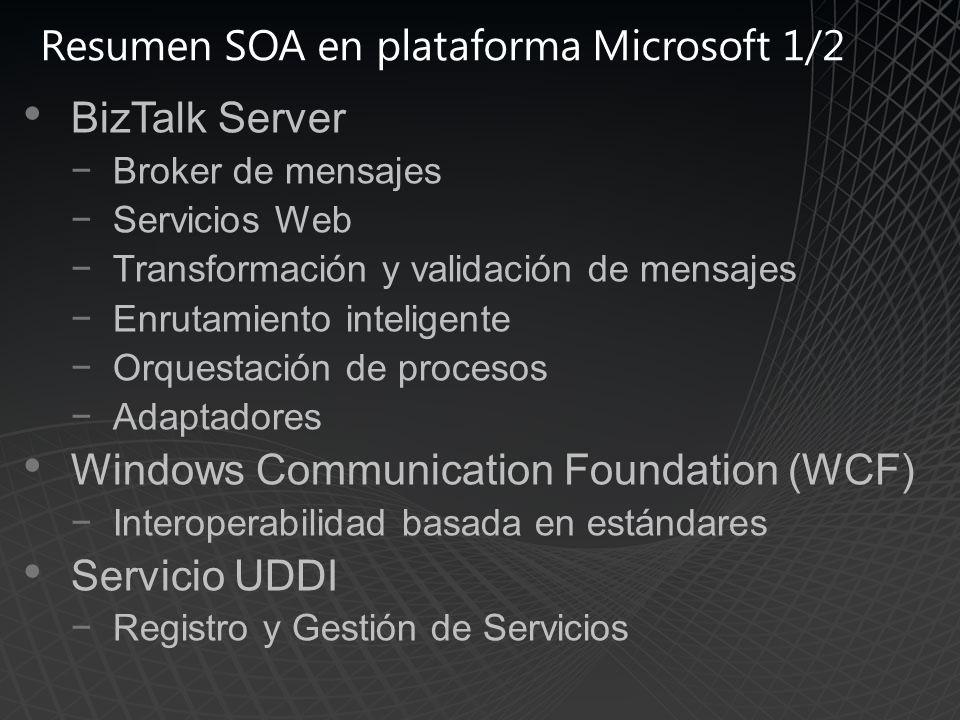 Resumen SOA en plataforma Microsoft 1/2