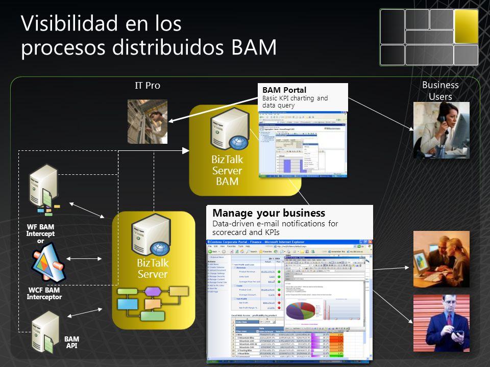 Visibilidad en los procesos distribuidos BAM