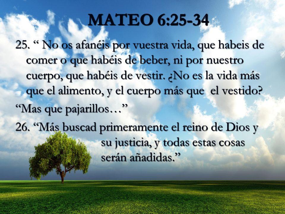 MATEO 6:25-34