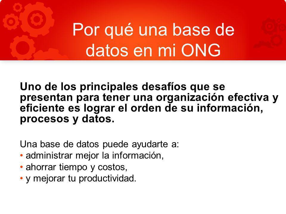 Por qué una base de datos en mi ONG