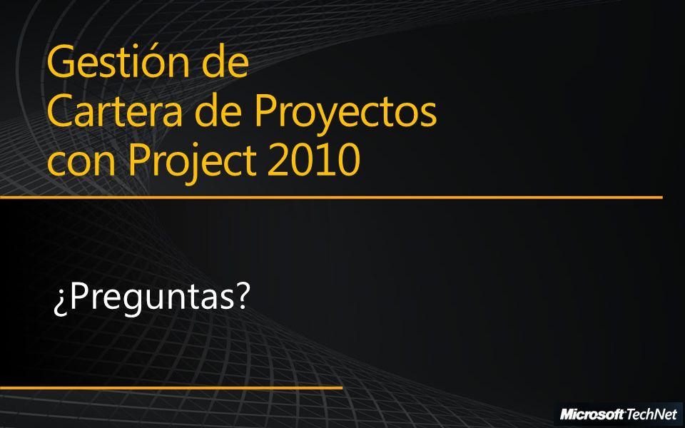 Gestión de Cartera de Proyectos con Project 2010