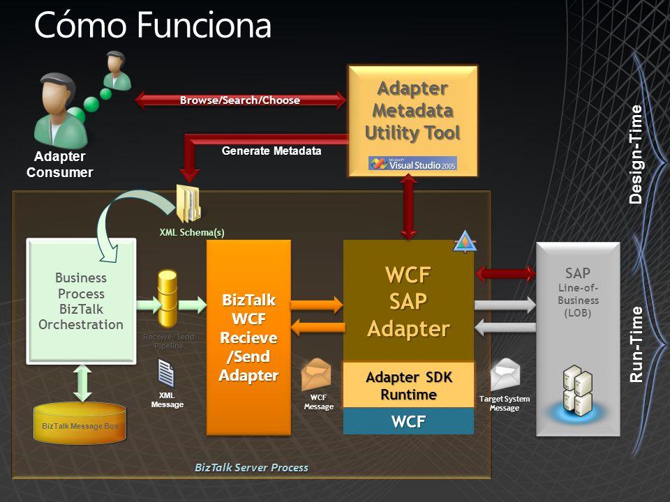 Cómo Funciona WCF SAP Adapter Metadata Utility Tool Design-Time
